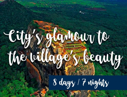 City's glamour to the village's beauty