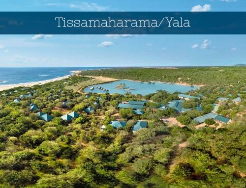 Tissamaharama / Yala