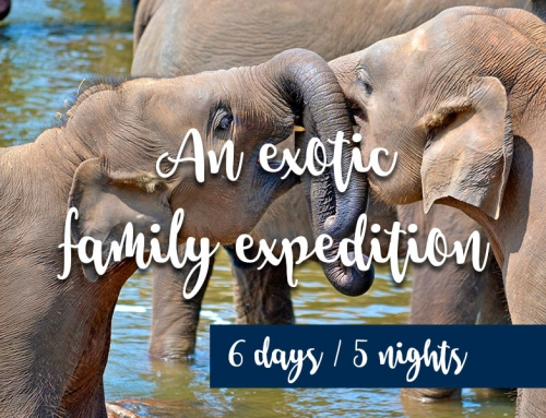 An exotic family expedition