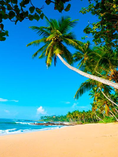 negombo-beach