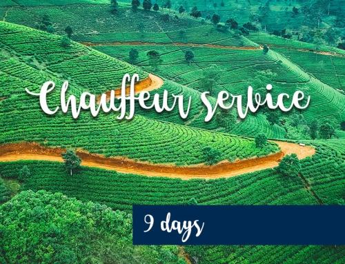 Chauffeur service – 9 days